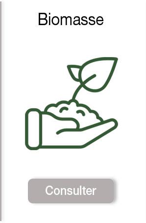 Biomasse : poele à pellet